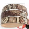 Cherry tonality for genuine python belt by Gleni