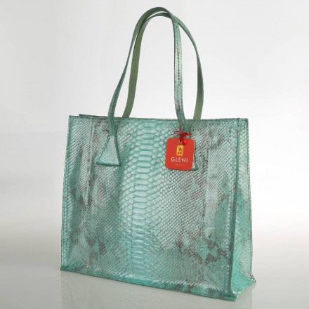 shopper pitone limpet shell